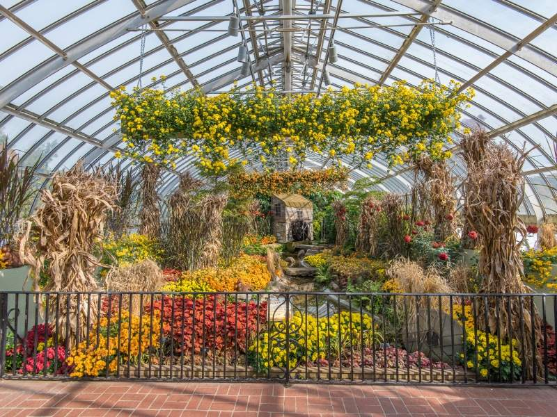 Phipps Conservatory Christmas 2019.Phipps Conservatory And Botanical Gardens Visit Pittsburgh